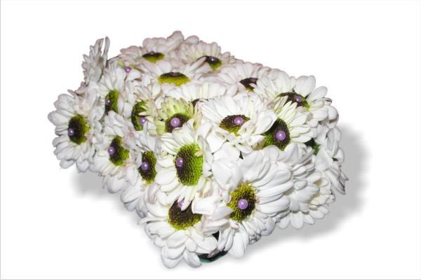 Lillekimp